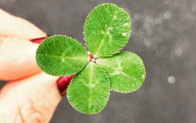Is property investment all about luck?